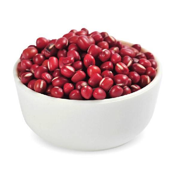 精選優質紅豆