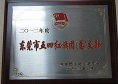 东莞市五四红旗团(总)支部